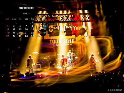 Calendar 2018.11